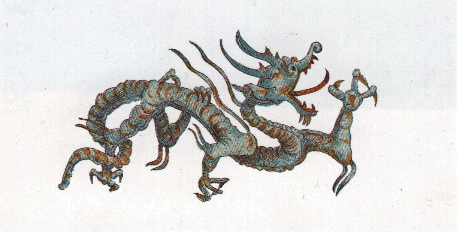 Une image contenant reptile  Description générée automatiquement